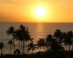 Maui photo dairy